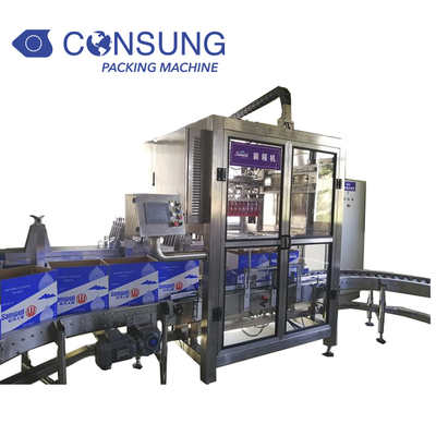 Automatic Servo System Carton Packer Machine for Bottle